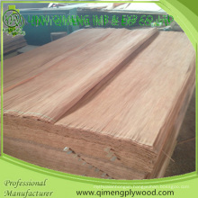 Rotary Cutting Size 1280X2500mm Abcd Grade Plb Veneer for Plywood