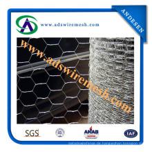 ISO9001: 2008 Hexagonal Maschendraht (ADS-HWM-10)