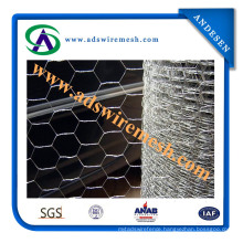 ISO9001: 2008 Hexagonal Wire Mesh (ADS-HWM-10)