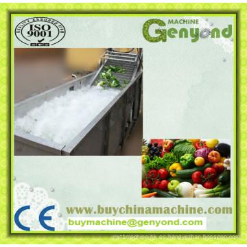Máquina de lavado de fruta de acero inoxidable