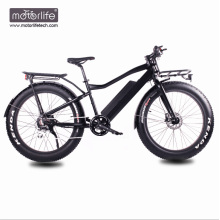 48V1000W Bafang Mid Drive new design fat electric bike with hidden battery