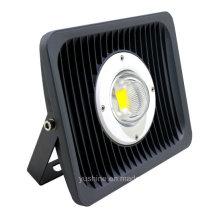 Projecteur LED 30W avec objectif 30 °