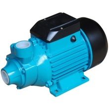 (QB-60-1) High Quality Surface Domestic Peripheral Water Pump with Ce