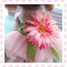 Собачка Собака Одежда Лето Платье Розовый Свадебное Платье Собаки Любимчика Щенок Одежда
