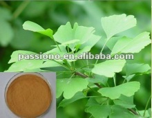 Selling natural Ginkgo Biloba Extract 24/6, various plant extract