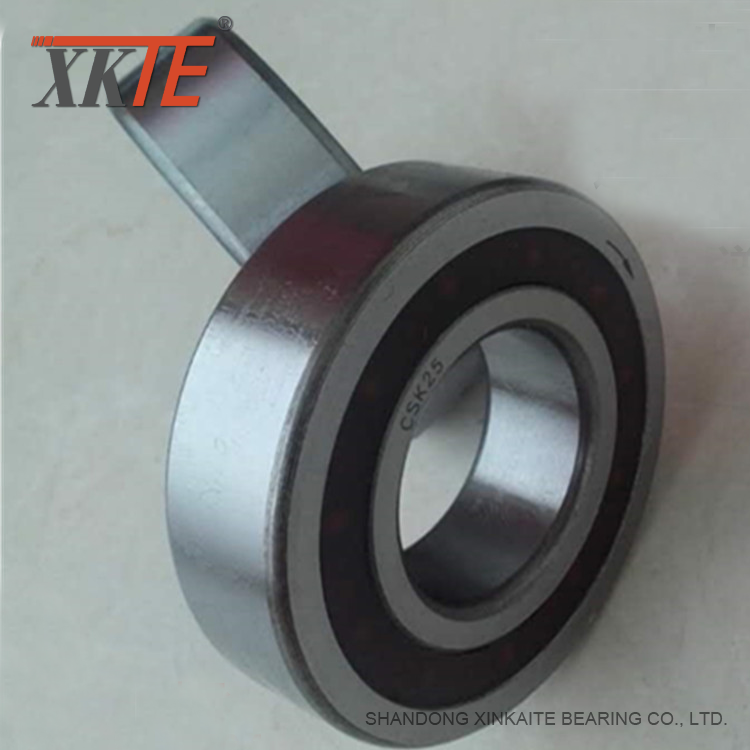 One Way Clutch Bearing Csk25