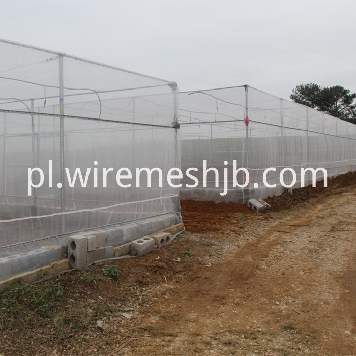 Fine Insect Mesh Netting