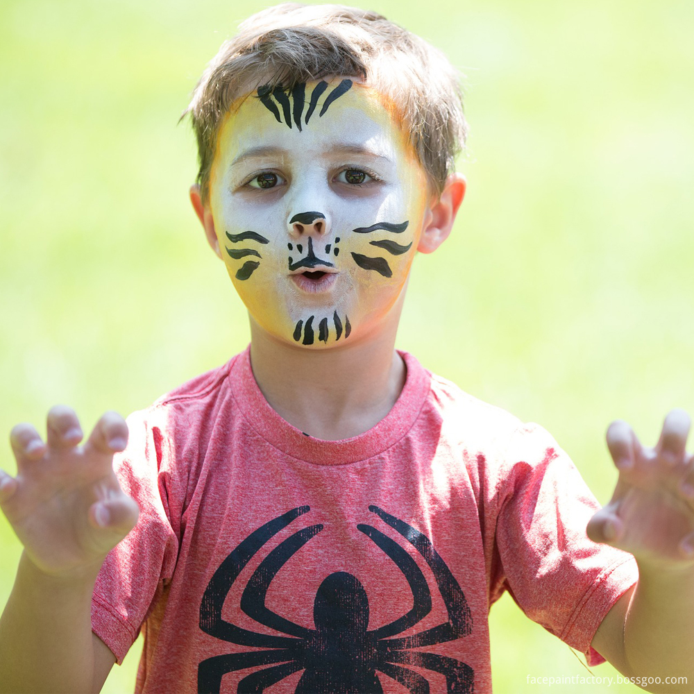 Boy Face Painting