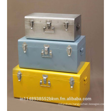 Industrial Metallic Storage Trunk