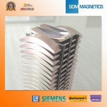 Professional Ferrite Arc Motor Magnets