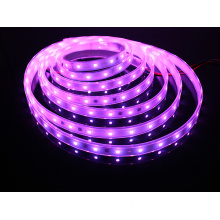 SMD5050 LED Strip Light