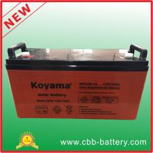 Bateria Solar fora do sistema de grade para uso doméstico, painel solar e bateria solar Nps120-12