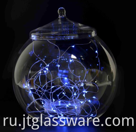 Handblown Glass Terrarium Container Plant Flower Decor 003
