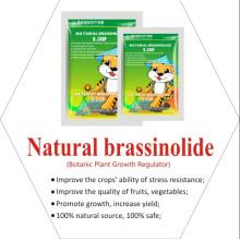 Promoteur de croissance des plantes Brassinolide