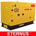 Générateur fiable 40kw Diesel Price (BU30KS)