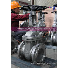 ANSI Gate Valve with Locked Design