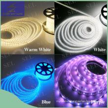 110V Warm White LED Rope Light for Decoration