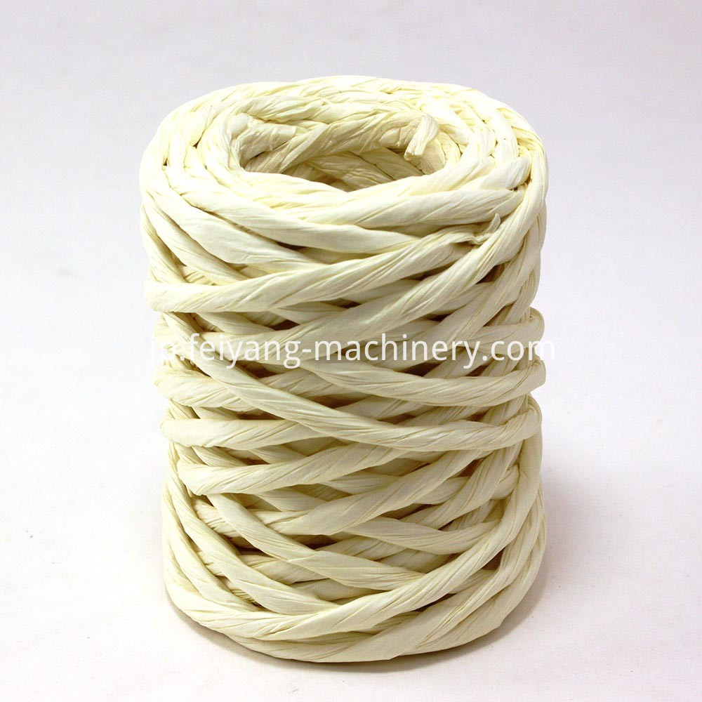 thick twisted paper cord