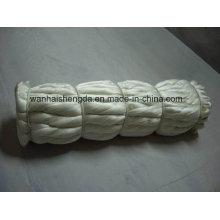 100% fil de soie brut de mûrier avec de haute qualité