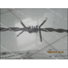 Heißer Verkauf 12X12 Stacheldraht Draht