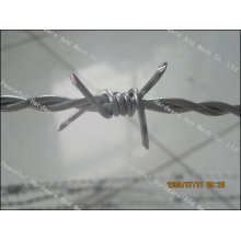 Alambre de hierro espinoso caliente de la venta 12X12