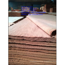 Hot sale BUR veneer