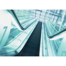 Dsk High Efficient Safe & Reliable Moving Walk