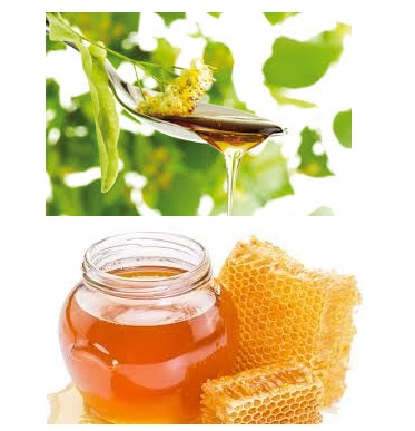 bulk sale organic golden liden bee honey