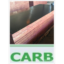 Finger Joint Plywood para cimento Poplar Core de primeira classe (HBR016)