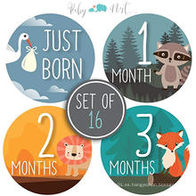 Etiqueta engomada de encargo del mes del bebé, etiquetas engomadas mensuales del bebé, etiquetas engomadas del hito del bebé