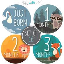 Autocollant personnalisé de mois de bébé, bébé mensuel autocollants, autocollants de jalon de bébé