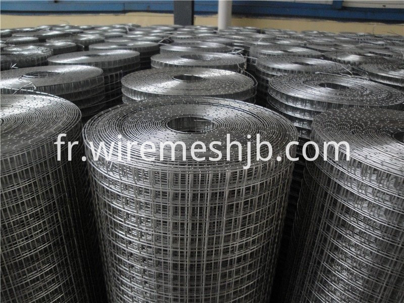 Galvanizing Welded Wire Mesh