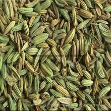Семена фенхеля Лучшая цена