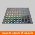 Silber 3D Lasersicherheit Hologramm Label