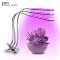 Plantas de mesa para plantas de escritório lâmpada LED para plantas