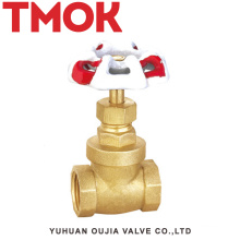 DN20 full port brass color no rubber ring double internal thread full open with hand wheel brass gate valve