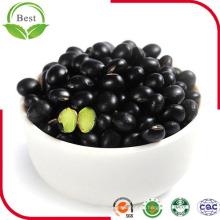 Nuevos frijoles negros pequeños de cultivos chinos