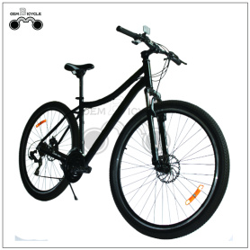 29er Inch Big MTB Mountain Cycle for Tall Man