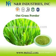 Organic oat grass powder