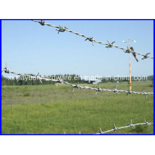 High Quality Best Price Galvanized Barbed Wire