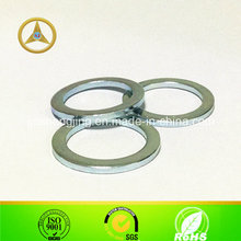 Non-Standard Steel Washer