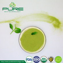 Polvere di tè verde Matcha Private Label Five Grades