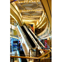 Dsk Economical Indoor Types Vvvf Escalator