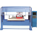 Visi Positioning Single Head Double Die Cutting Machine