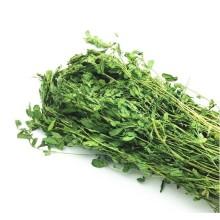Rabbit Grass Hay Alfalfa Grass Hay