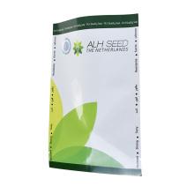 Storage Bag Garden Vegetable Seeds Packets Package Bag