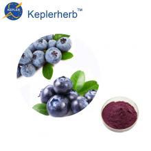 98% Heidelbeerfruchtpulver