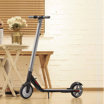 Nouveau arrive 2 roues pliant scooter électrique