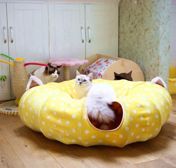 Cat Tube Toy
