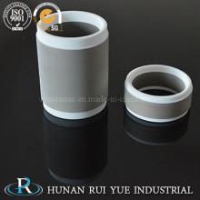 Высокое качество металлизированная Al2O3 95% глинозема керамические части